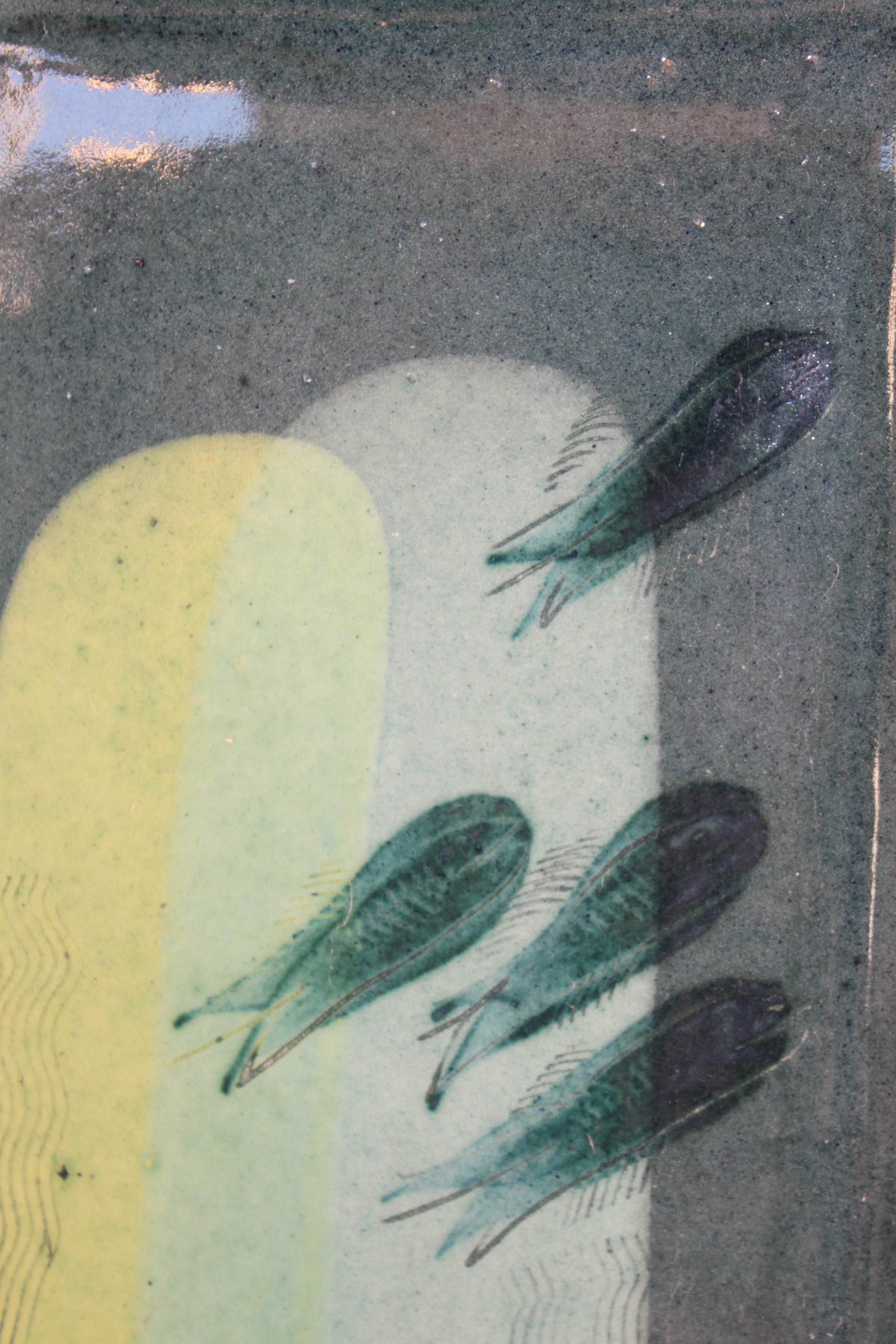 Silberfisch-dunkel-2